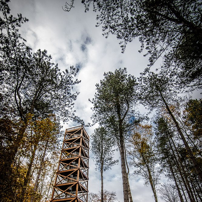 Observation tower of General Mangin © Rémy SALAÜN - All rights reserved